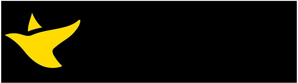 1000x279 Horiz Canary Logo Black Text